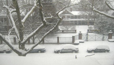 A snowy street, with about six inches of snow, covering cars, the ground, trees, and the large home seen behind a fence.